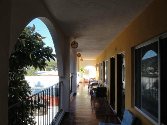 Hotel Delfin: Third floor, check out the giant rubber tree
