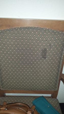 Club-Hotel Nashville Inn & Suites: Chair had stains