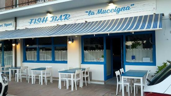 Fish Bar la Muccigna