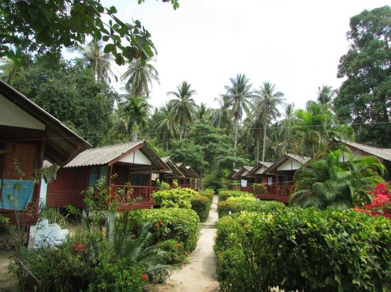 Royal Orchid Resort: bungalows
