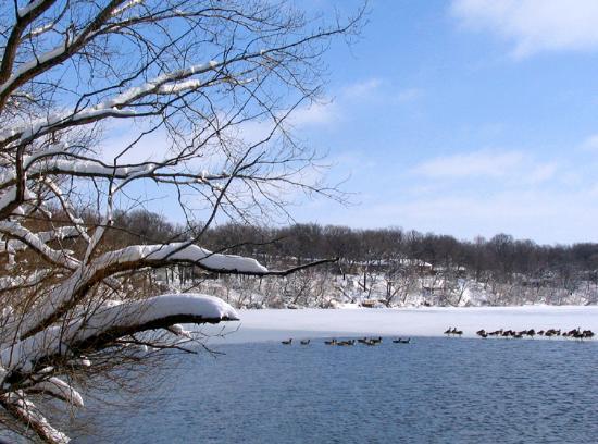 Amber Lake Park