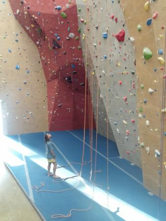 Triangle Rock Club - Morrisville : Tommy studying the routes on this 55 foot wall