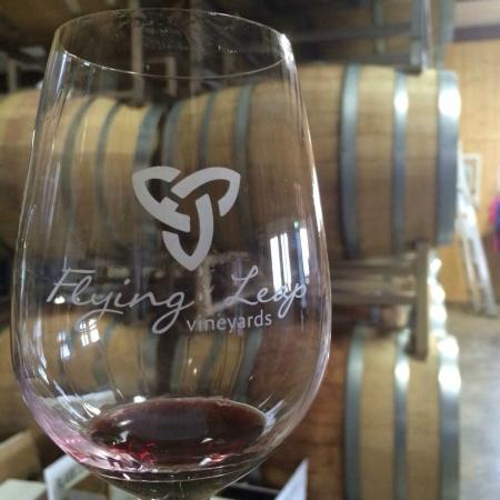 Flying Leap Vineyards: Red flight