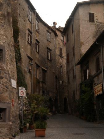 Albergo della Posta: Il borgo dietro l'albergo e sotto il Castello