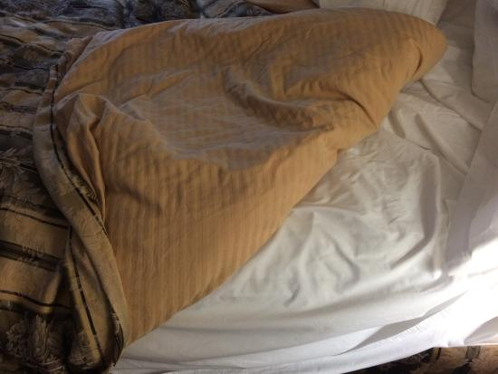 BEST WESTERN Chelsea Inn: Bedspread was also main blanket.