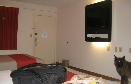 Super 8 Martinsburg: Room interior with nice tv