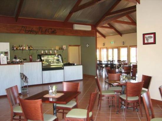 Monkey Nut Cafe: Sneak peak inside...
