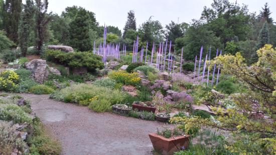Beau Denver Botanic Gardens: Alpine Garden