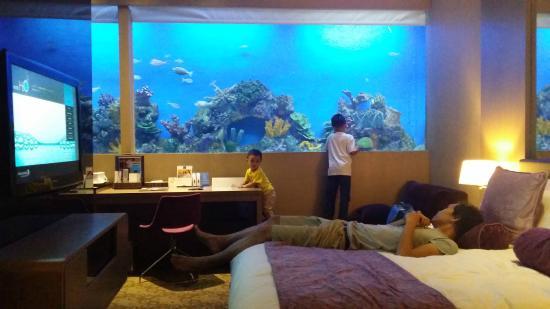 aqua room