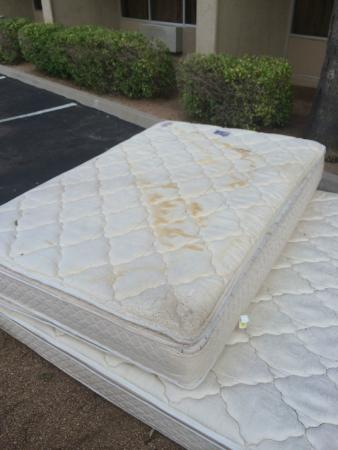 stained mattress.  Stained Sheraton Phoenix Airport Hotel Tempe Pee Stained Mattress In 4