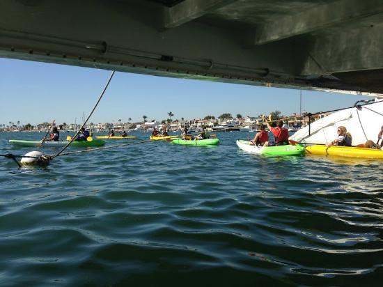 Southwind Kayak Center Kayaking In Newport