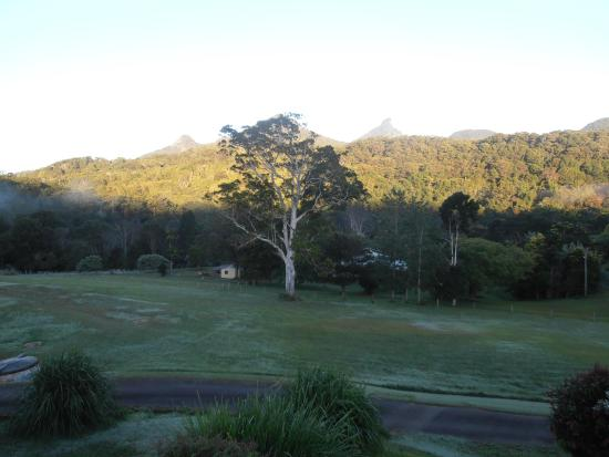 A View of Mt Warning Bed and Breakfast: View 3 of Mt Warning