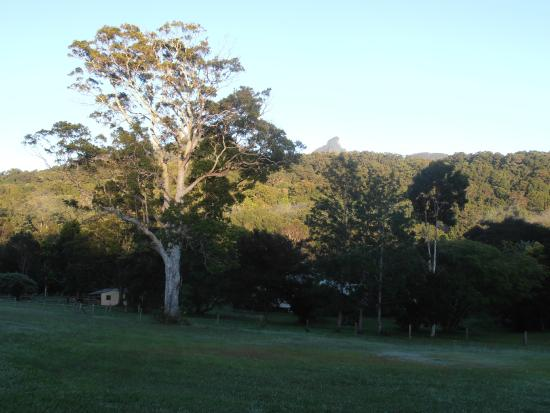 A View of Mt Warning Bed & Breakfast: View 2 of Mt Warning