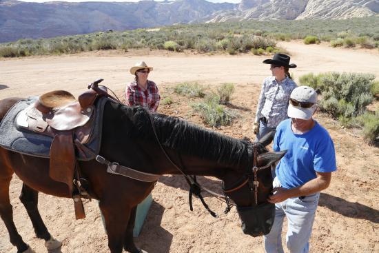 Fairfield Inn St. George: Preparing for our Horseback ride