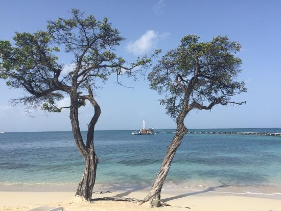 Afterwork sur le sable - Picture of Club Med Buccaneer's ...