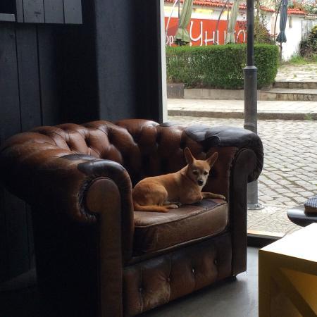 Art News Cafe : a friendly companion