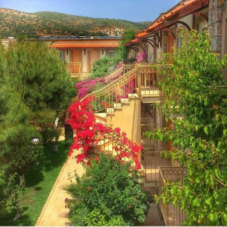 Moonshine Hotel & Suites: Oda Manzarası