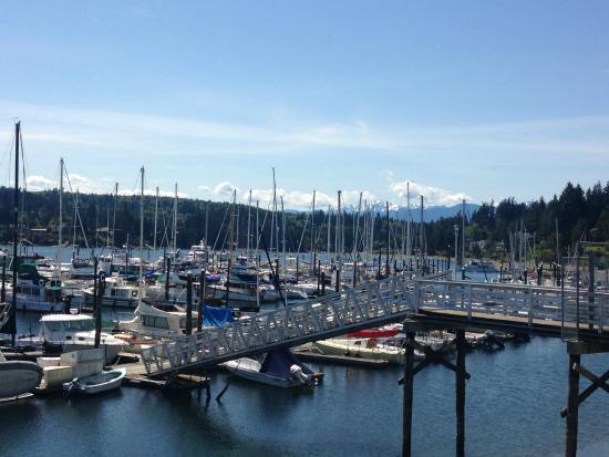 Port Ludlow, WA: Docks