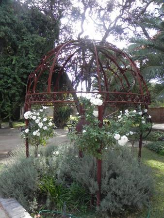 Jan Kempdorp, جنوب أفريقيا: Garden