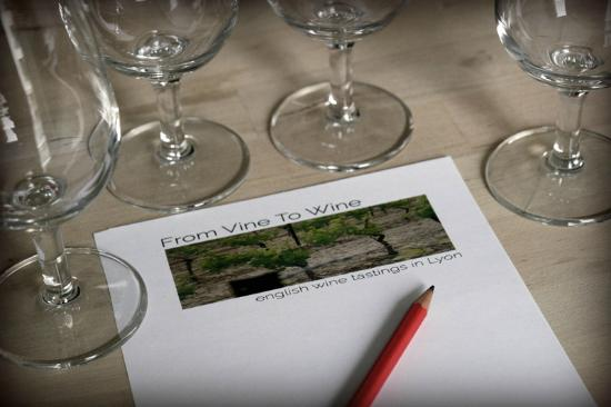 From Vine to Wine Photo