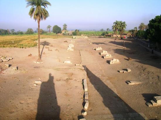 Medamud Temple: sfinx away