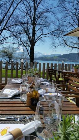 Restaurant Davis Luzern