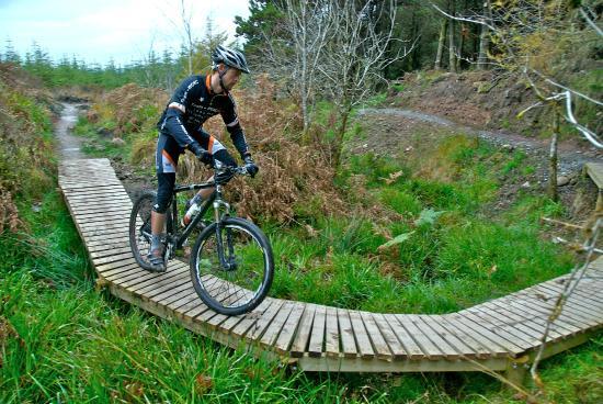 Ballyhoura Walking Trails: Ballyhoura Mountain Bike Trail