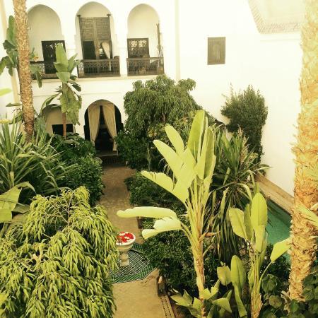 Riad Samarkand : Patio/ Jardin