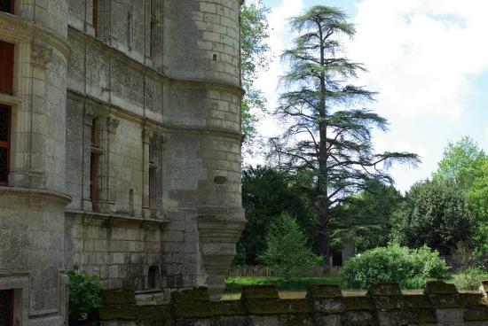 media-cdn.tripadvisor.com/media/photo-s/07/ee/82/85/chateau-of-azay-le-rideau