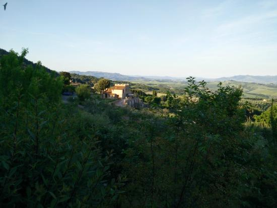 Podere Le Monache : partial view