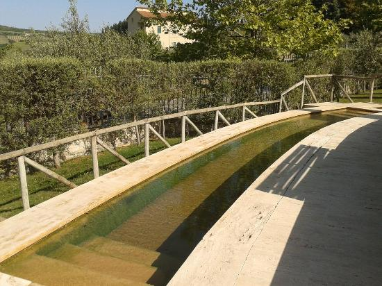 https://media-cdn.tripadvisor.com/media/photo-s/07/ee/af/10/piscina-termale-per-cani.jpg