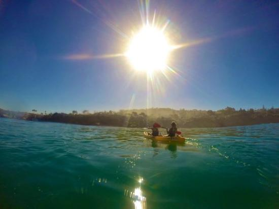 Just Kayak San Diego 2019 What To Know Before You Go