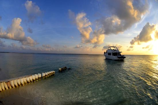 """Cayman Private Charters : Sunset and """"Paradise Explorer"""""""