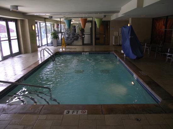 4th Floor Indoor Pool Picture Of Hilton Garden Inn Atlanta Downtown Atlanta Tripadvisor