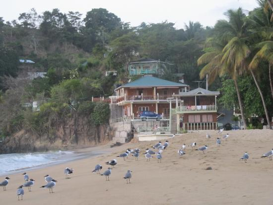 Luna Beach Resort - Roatan resort and beach