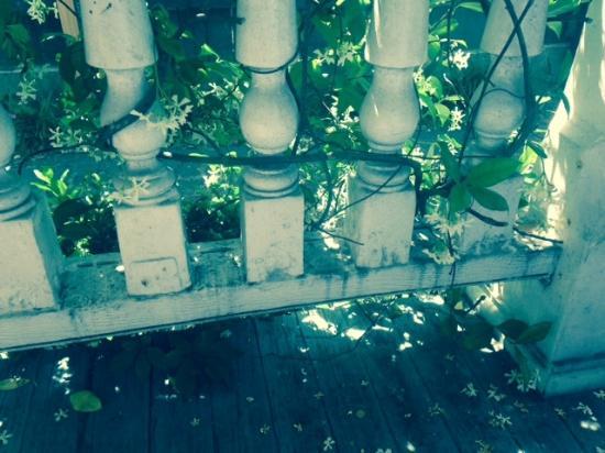 Palmer's Pinckney Inn: Porch Railing