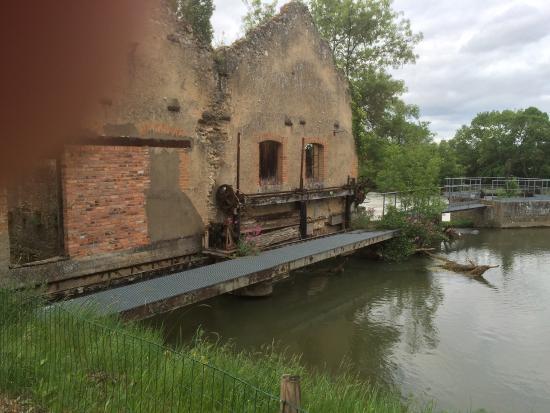 Domaine de la Courbe : Cadre idyllique