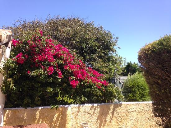 Quinta Al Gharb Resort