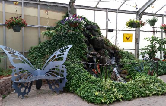 The Original Mackinac Island Butterfly House & Insect World Photo