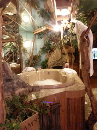 Jacuzzi Picture Of Feather Nest Inn Cherry Hill