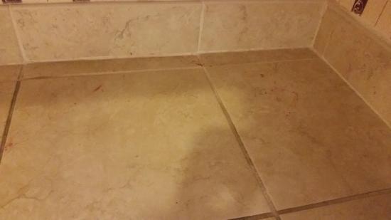 Holiday Inn Philadelphia South-Swedesboro : under our sink!