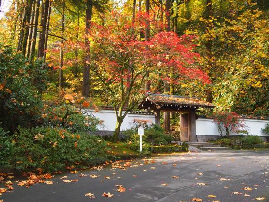 Entrance To Portland Rose Gardens : Days in portland travel guide on tripadvisor