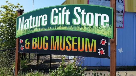 Bremerton Bug Museum: Sign for the Bug Museum