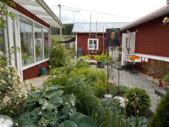 Chinova Motesgard : Trädgård