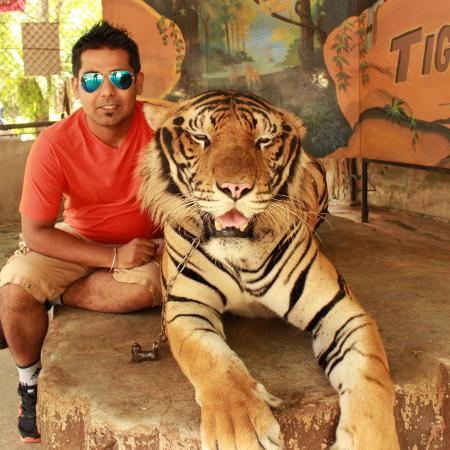 Sriracha Tiger Zoo: take this pic from your own camera in 100 bhat only