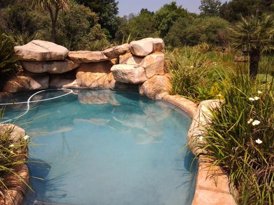 African Silhouette Guesthouse: Pool