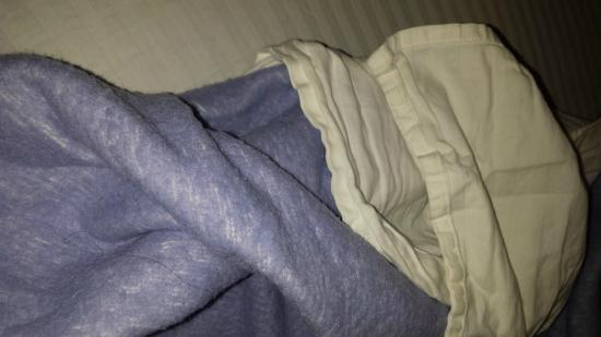 Rivervale, Australien: Bed hasn't been slept in. Pulled bag covers to reveal greying, crumpled bedding with hair in it.