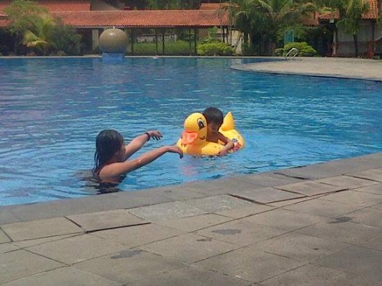 Singgasana Hotel Surabaya : area pool dewasa
