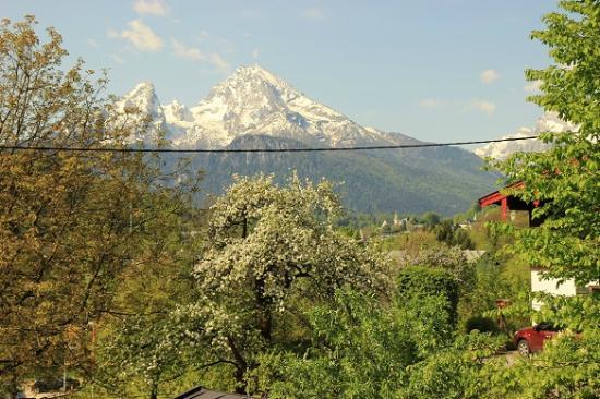 Alpensport-Hotel Seimler : Вид из окна номера