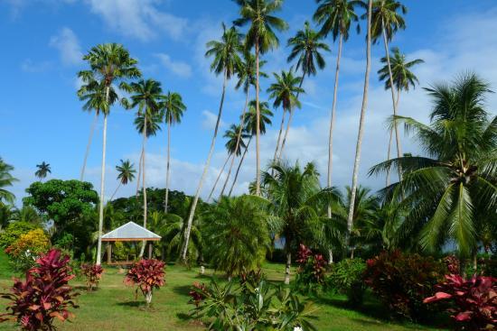 Daku Resort: Peaceful Garden